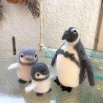 羊毛フェルトのペンギン作品レポート