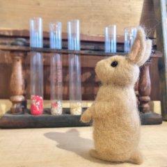 羊毛フェルトの「ウサギ」作品レポート