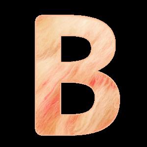 B 初〜中級クラス